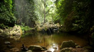 Cairns Backpackers Top Ten Things to Do