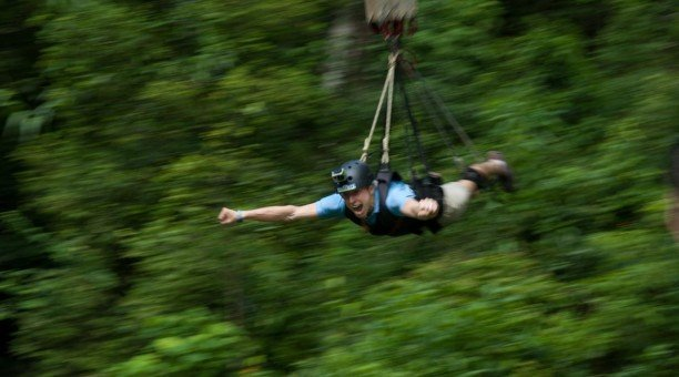 Cairns Jungle swing, North Queensland Australia