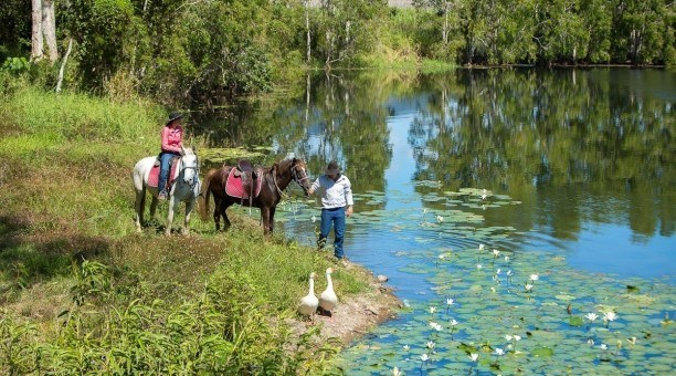 Horseriding tours Cairns