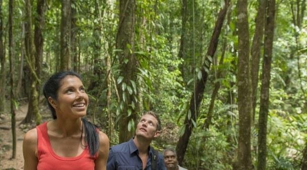 Guided Rainforest Walks