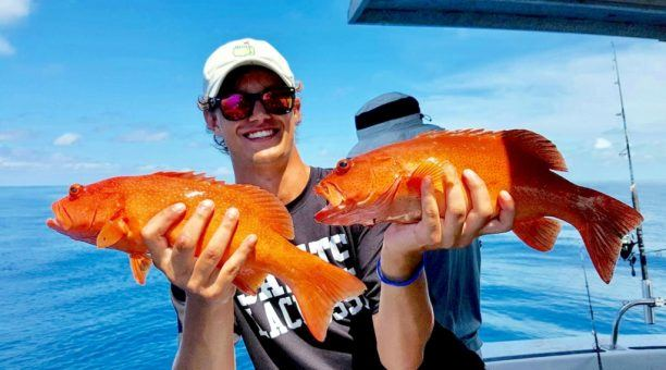 Cairns Reef Fishing