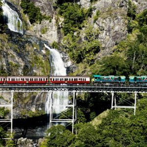 Kuranda Scenic Train, Rainforestation and Skyrail Experience – CKB