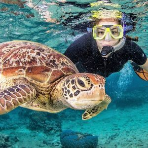 Cairns Adventure Package