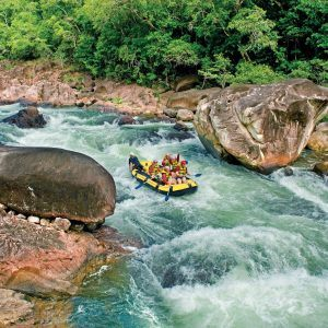 Reef Rafting and Rainforest